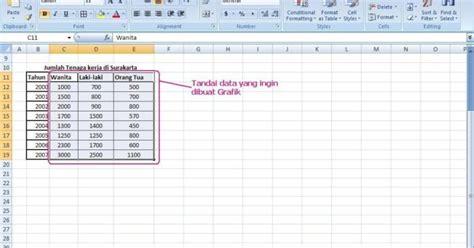 belajar membuat program akuntansi dengan ms excel belajar membuat grafik di excel www data iptek
