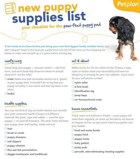 new puppy supplies list the world s catalog of ideas