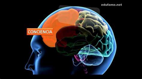 Cerebro Adolescente | el cerebro adolescente youtube