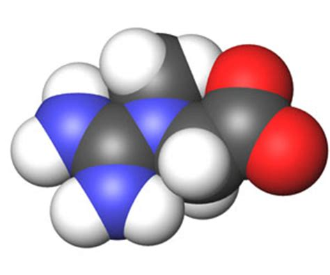 creatine depression creatine aids in outmuscling major depression