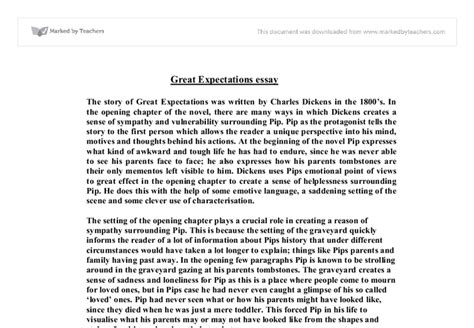 Great Expectations Essay by At Least One Other Person Edit Your Essay About Essays On Great Expectations