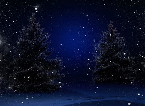 wallpaper christmas night nature trees winter snow merry christmas new year