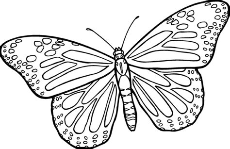 clip art black and white moth clipart 2157341
