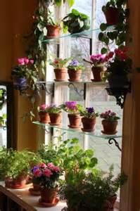 indoor window garden 44 awesome indoor garden and planters ideas butterbin
