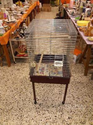 regalo gabbia uccelli regalo gabbia posot class