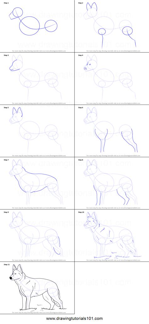 how to a german shepherd how to draw german shepherd printable step by step drawing sheet