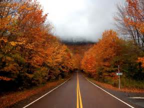 fall colors in vermont tales from vermont s 802 toyota enjoy vermont foliage in