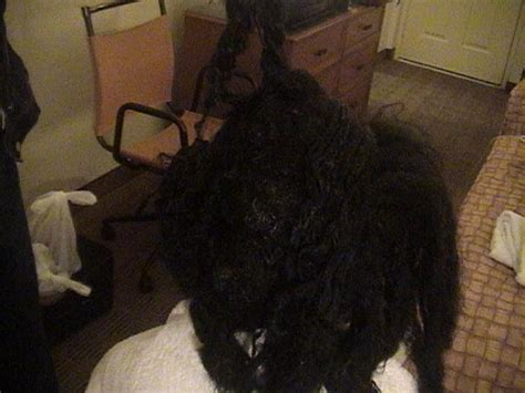 pictures after weave removal tangled hair techs analysis of removal for sew in hair