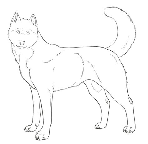 coloring pages of husky dogs husky coloring pages best coloring pages for