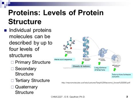 4 protein structure levels proteins levels of protein structure conformation of