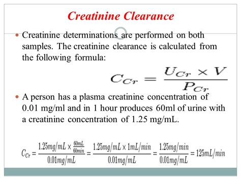 creatine calculator creatinine clearance equation tessshebaylo