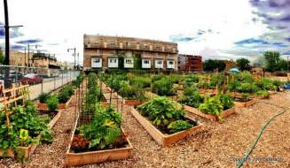 10 steps to starting a community garden american