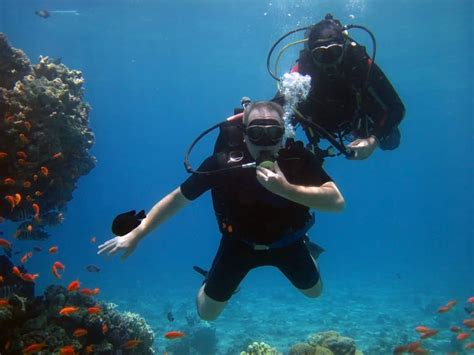 dive certifications scuba diving without certifications scuba diving gear