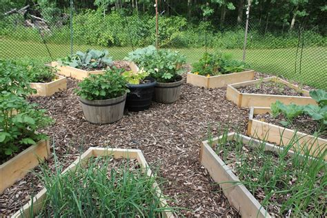raised beds cabinorganic