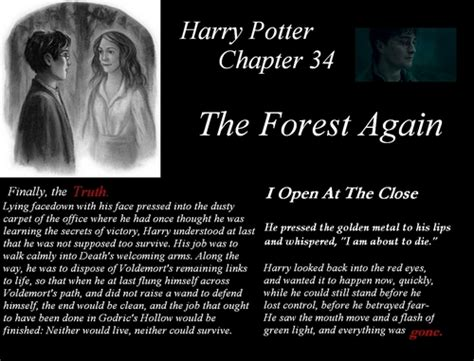 unhinged harry again calls the harry potter images harry potter the forest again hd