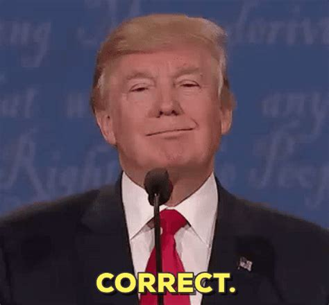 donald trump wrong gif election debate gifs find share on giphy