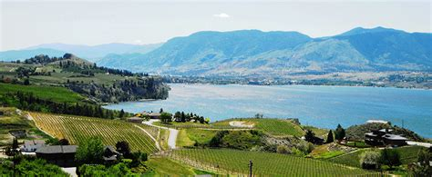 naramata bench wineries naramata bench wineries association a story in every bottle bc colleges