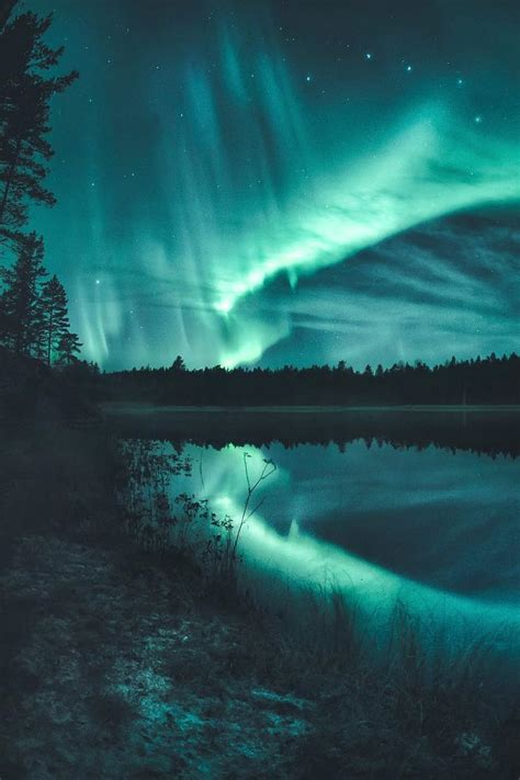 finland in december northern lights december 20 2016 at 11 07pm from utrippy the view up