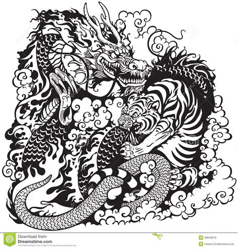 dragon and tiger fighting stock vector image of strong