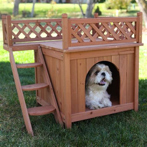 a house for a dog quaintly garcia room with a view dog house