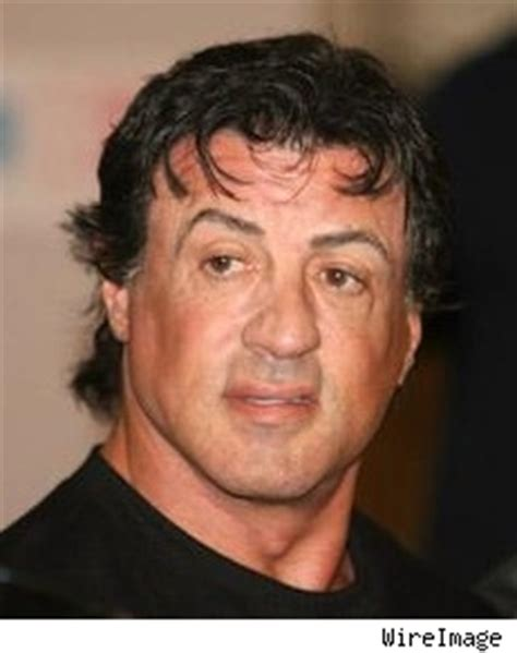 Stallone Pleads Guilty To Import Charge by Stallone Pleads Guilty To Hormone Import Charge Tmz