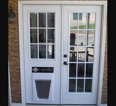 Pet Door Insert by Door With Door Insert Doors