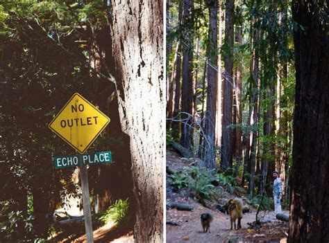 friendly hikes bay area the best friendly waterfall hikes in the bay area