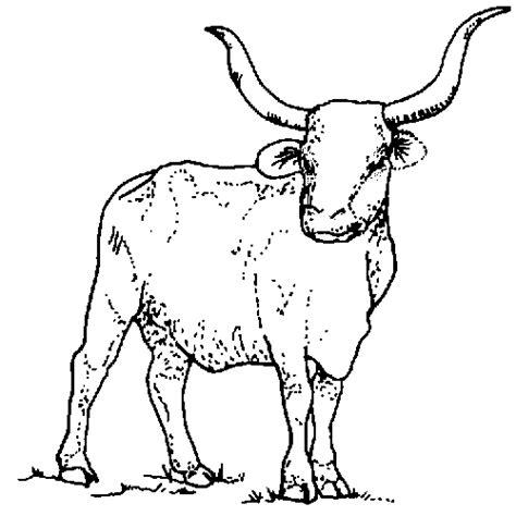 tpwd kids texas symbols longhorn