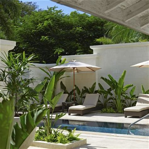 california backyard 1000 ideas about tropical pool on pinterest pools