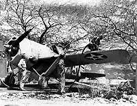 usn aircraft  brewster f2a fighters    ground & shipboard