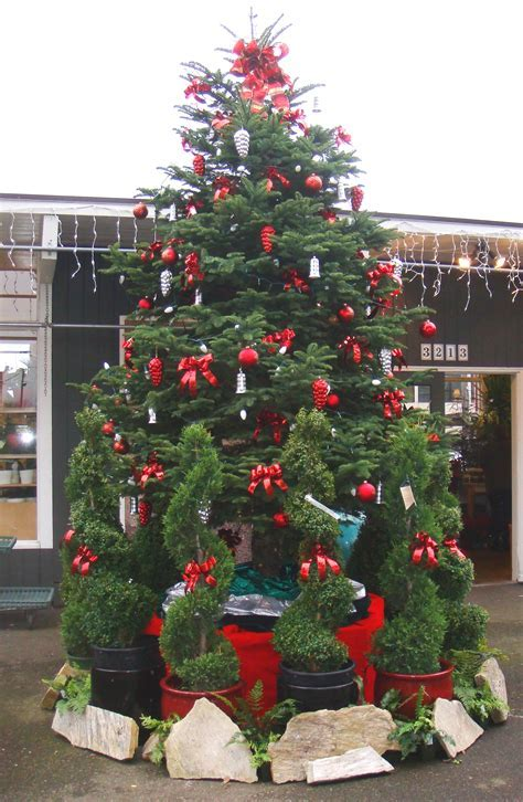 FRESH CHRISTMAS DECORATIONS FOR THE NATURE LOVERS