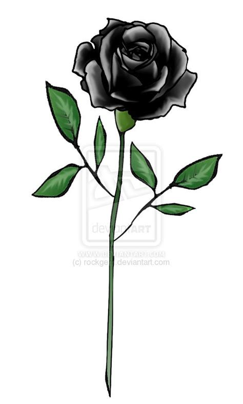 black rose tattoo design black ideas black design by