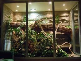 fabrication dun terrarium iguane green site fictif