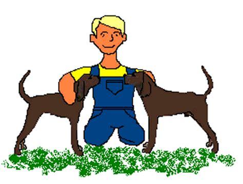 where the fern grows dogs where the fern grows process