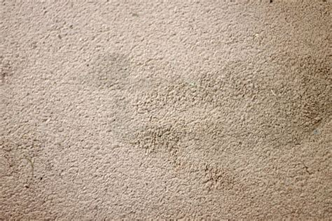 rug stains how to remove carpet stains with something you already