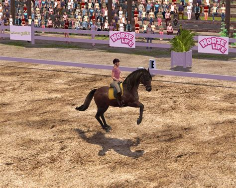 download free full version horse games horse life 2 pc download full version mundoblog