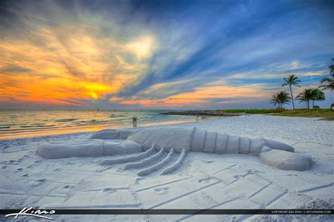 images of a naples florida lobster sand statue gulf coast