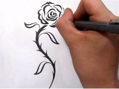 cool rose tattoo tattoos drawing a cool tribal design