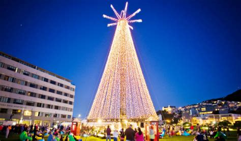 wellington christmas tree lights up stuff co nz