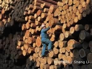 layout pabrik kayu lapis gandeng inhutani iv ptpn i kerjasama bangun pabrik kayu lapis