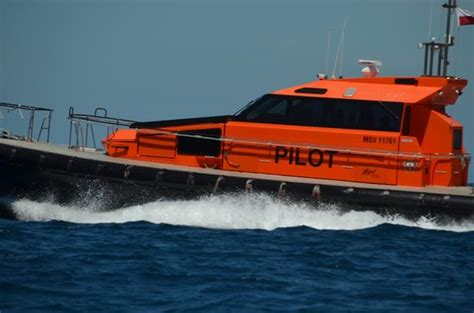 boat tour queenscliff pilot boat peels off to port picture of south bay eco