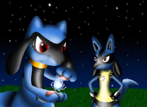 and sons trainer riolu by firerai on deviantart