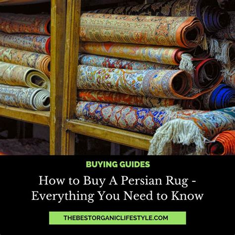 How To Buy A Persian Rug The Ultimate Guide The Best How To Buy A Rug