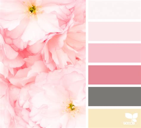 1000 images about yumptious colour on color palettes design seeds and paint palettes