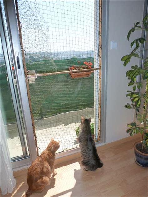 Comment Couvrir Un Balcon Ouvert by Comment S 233 Curiser Un Balcon Ouvert Forum Sur Les Chats