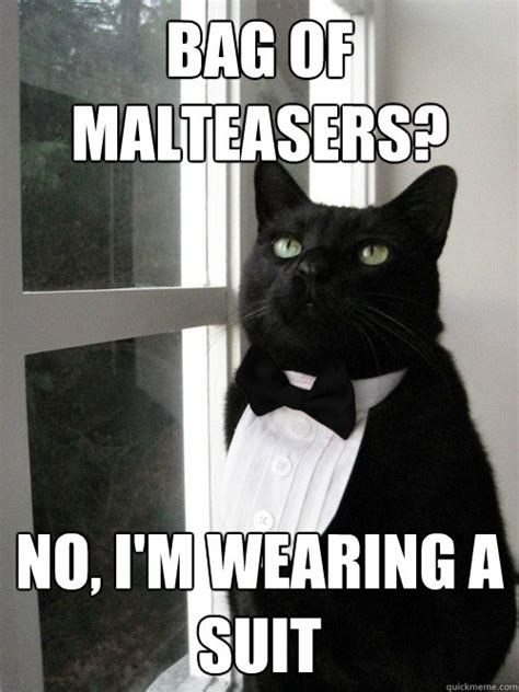 Cat In Suit Meme - bag of malteasers no i m wearing a suit one percent
