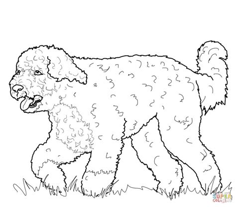 coloring pages of newfoundland newfoundland animal coloring pages coloring pages of dogs