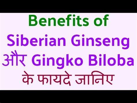 Nutrilite Siberian Ginseng With Ginkgo Biloba nutrilite siberian ginseng with gingko biloba क फ यद