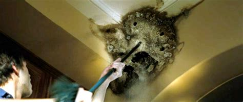 the entity bathroom scene john kenneth muir s reflections on cult movies and classic