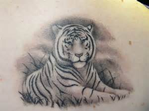 my white tiger by birdofdeath69 on deviantart